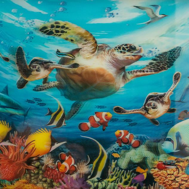 By Steve Hanley - Fish tank