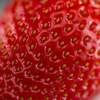 By Gary Denyer - Strawberry