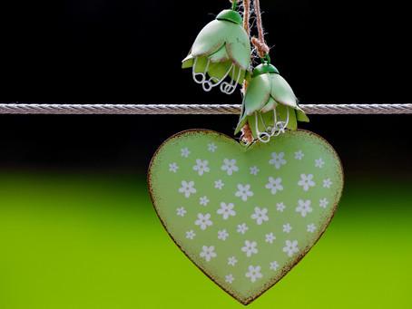 """Sobre """"Espalhar o amor, através do desenvolvimento sustentável de pessoas""""..."""