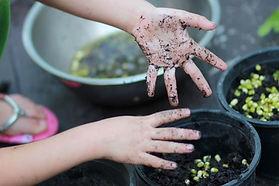 Exploring-Seasonal-Gardening.jpg