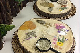 Connections to Nature ECE Workshop