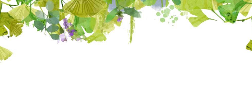 Leaves-Background-White.jpg