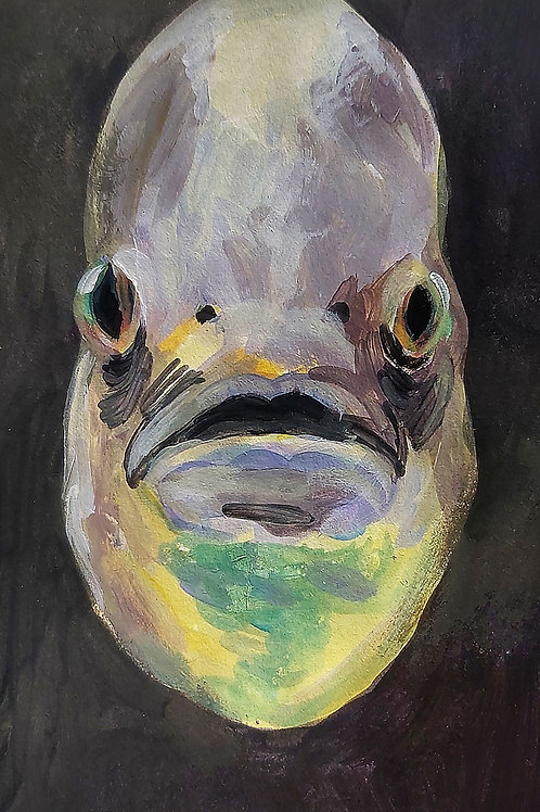 Fish Drawing #9