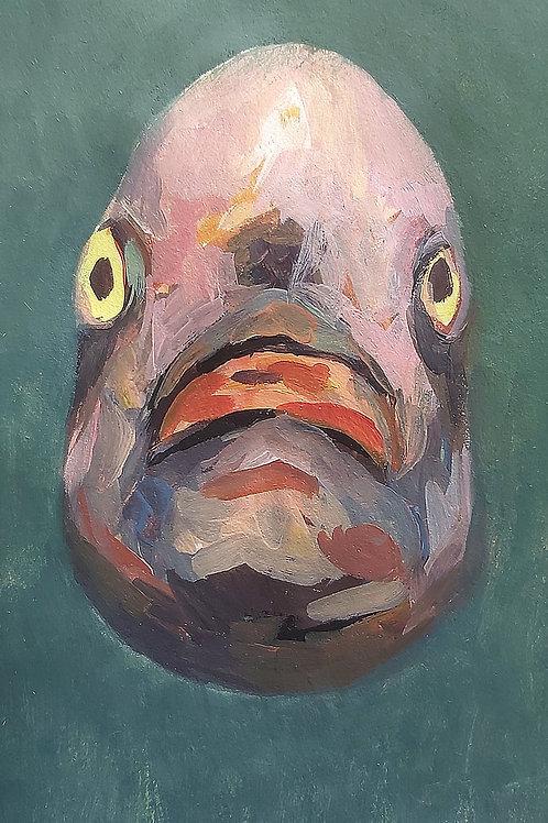 Fish Drawing #5