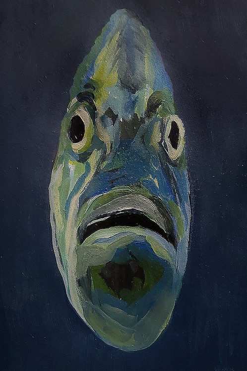 Fish Drawing #6