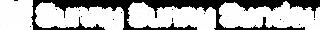 sss word logo-01.png