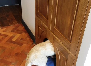 Шкаф или собачья будка?