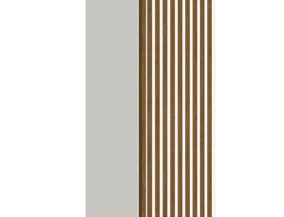 Шкаф-пенал Rail