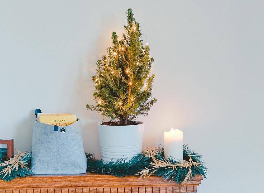 decoração, rima design, rima design lisboa, design, design de interiores, casa, decoração de casa, natal, natal em família, árvore de natal, árvore de natal decorada, decoração de natal, decoração árvore de natal, prendas natal