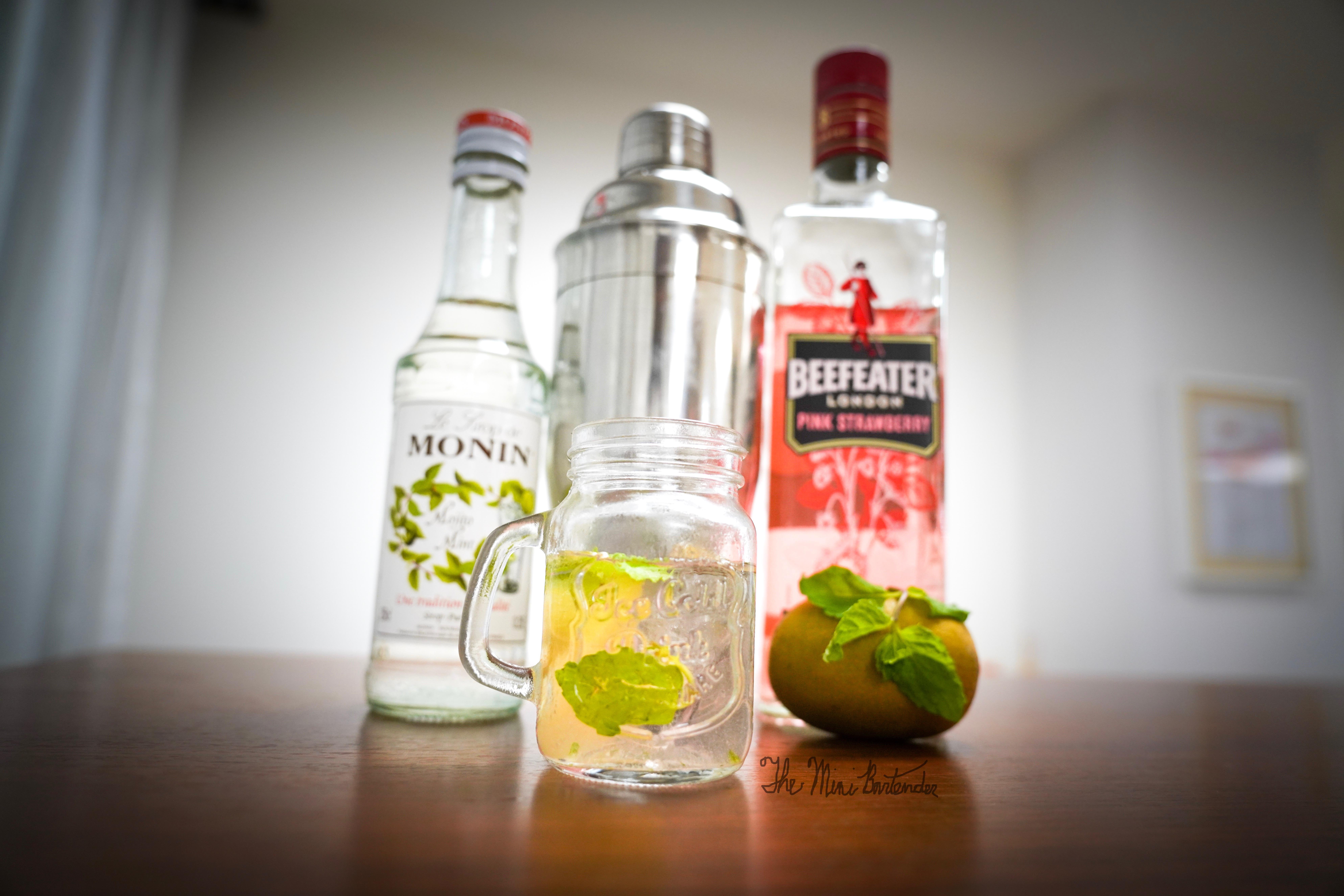 Strawberry Kiwi Mint Gin