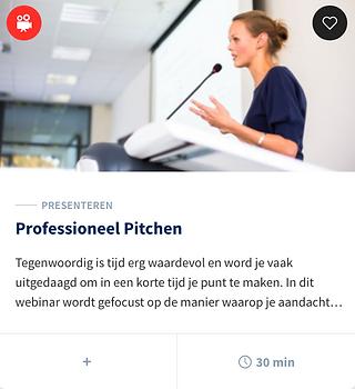 Professioneel Pichten.png