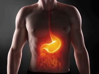 Tipos de digestión (Agni)