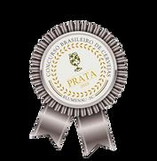 Medaha de Prata Concurso Brasileiro de Cervejas de Blumenau 2019