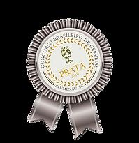 Old Dog Medalha de Prata Concurso Brasileiro de Cevejas de Blumenau 2019