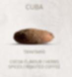 Cuba_Bean.PNG