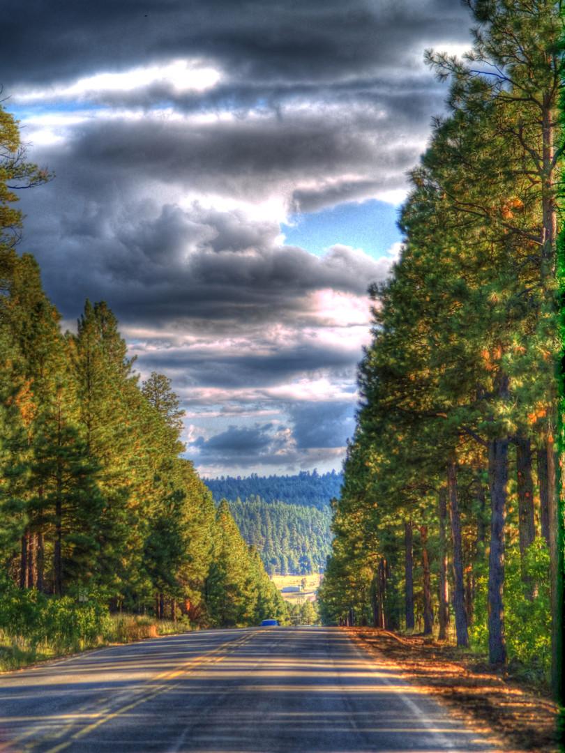 Driving through Flagstaff HDR.jpg