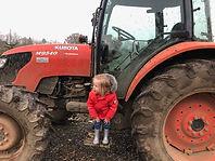 Christmas Tree Place near Hemel Hempstead farm tractor