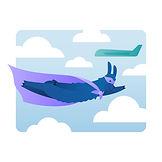 Digital marketing services illustration