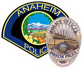 APD patch and badge.jpg