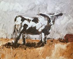 Bovine Pasture