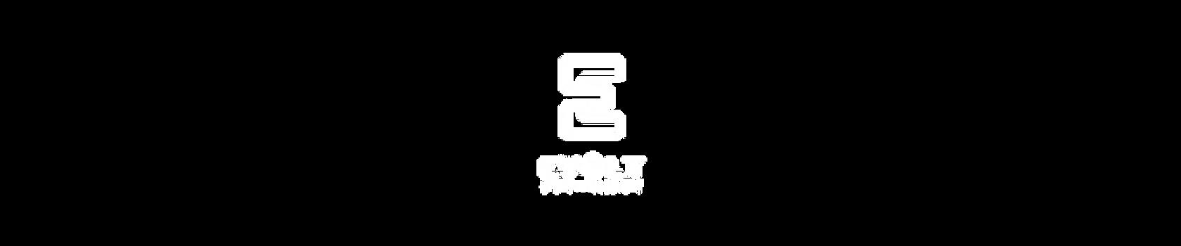 evolt white logo full.png