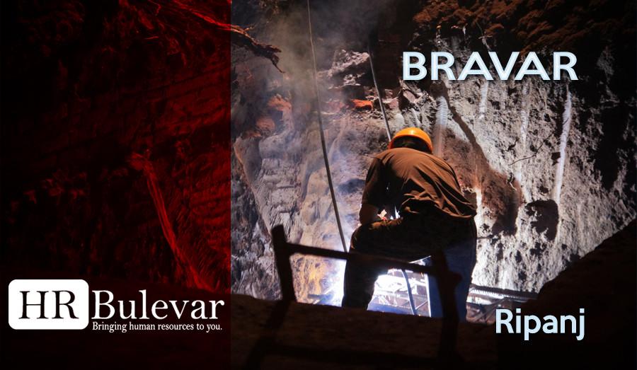 Beograd, Posao, Internet, Prodavac, bravar, varioc, co2