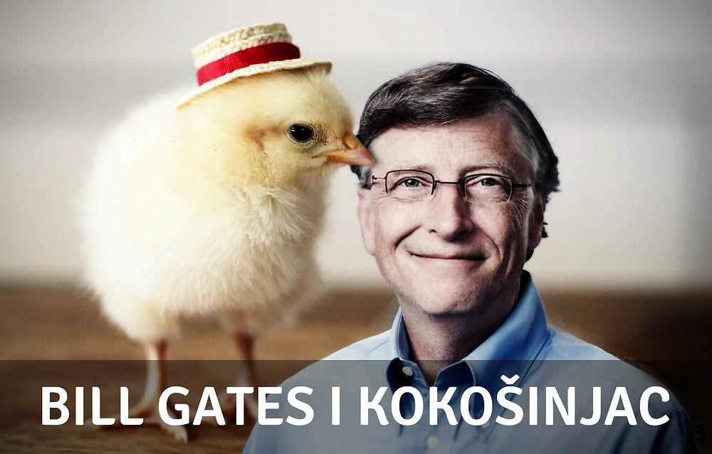 Bill Gates, chicken