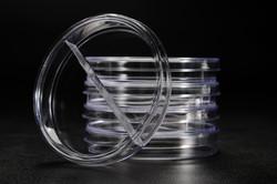 Placa de Petri 90x15 mm com divisão