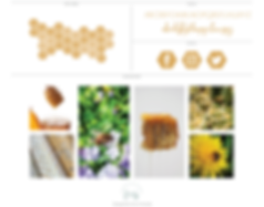 Katherine Elizabees Brand Board