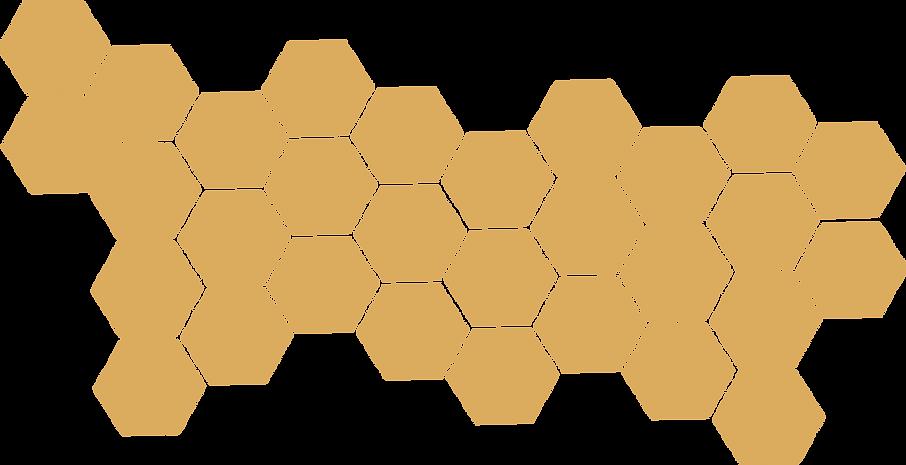 HoneyComb_Web.png