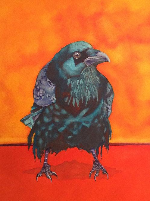 My Morning Jacket (raven)