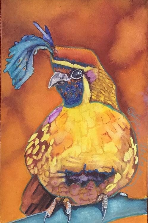Blue Plume (quail)