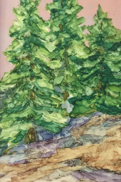 Debra Piedrafita, Pines in Spring