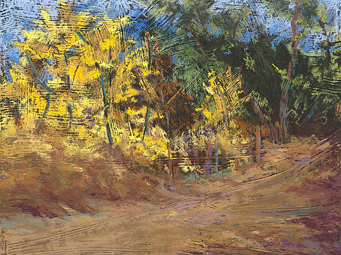 Joan Norris, Golden Road