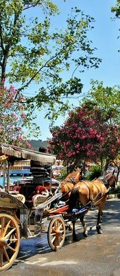 princes-island-tour-from-istanbul-buyuka