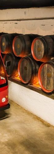 Cricova_cellar_winery__6____Copy.jpg