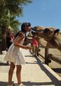 camel-park-5.jpg