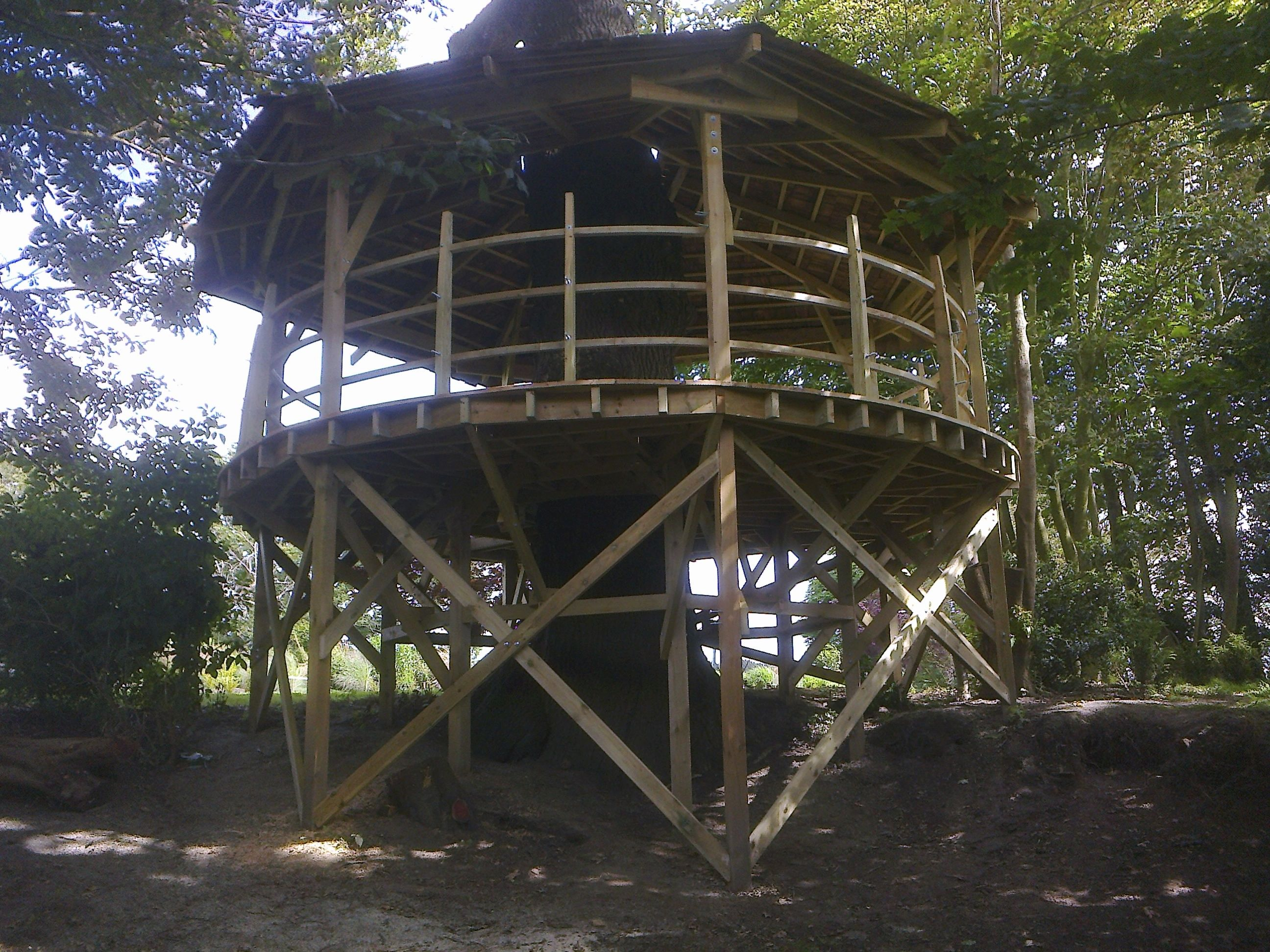 Treehouse platform, Keymer, West Sussex