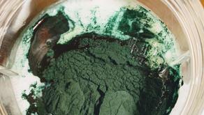 Spirulina Algae Shake