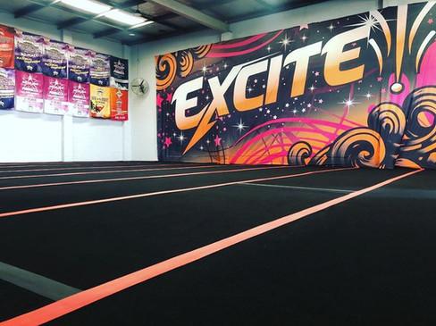 Cheer and Tumble Gym