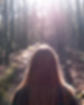 daylight-environment-forest-298563.jpg