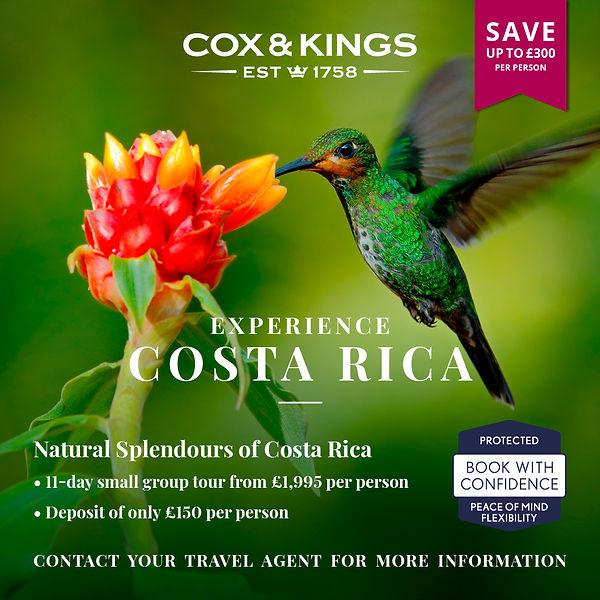 TRADE Instagram 1080x1080 COSTA RICA.jpg