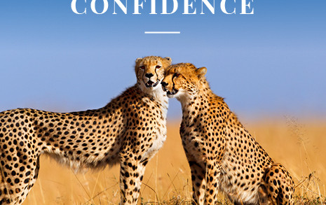 Book a new holiday with confidence