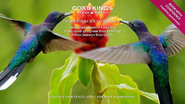 CK TRADE Twitter 1200x675 COSTARICA.jpg