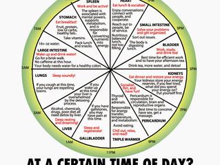 TCM Body Clock - Lifeline Acupuncture & Herbs Clinic