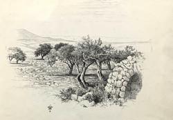 """""""Shepherd's Field Near Jerusalem"""""""