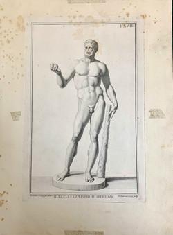 """""""Hercules from Museum Florentinum"""""""