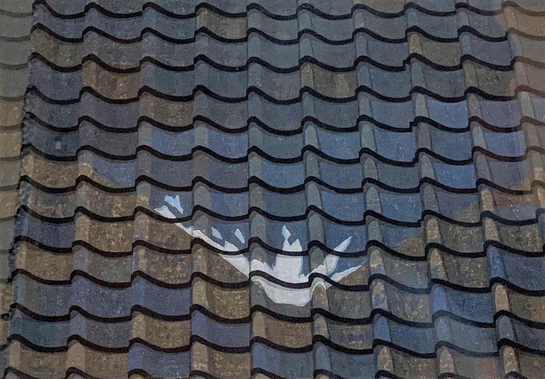 """Hara Rooftile Reflection of Mt. Fuji"""