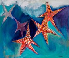 Luca's Starfish
