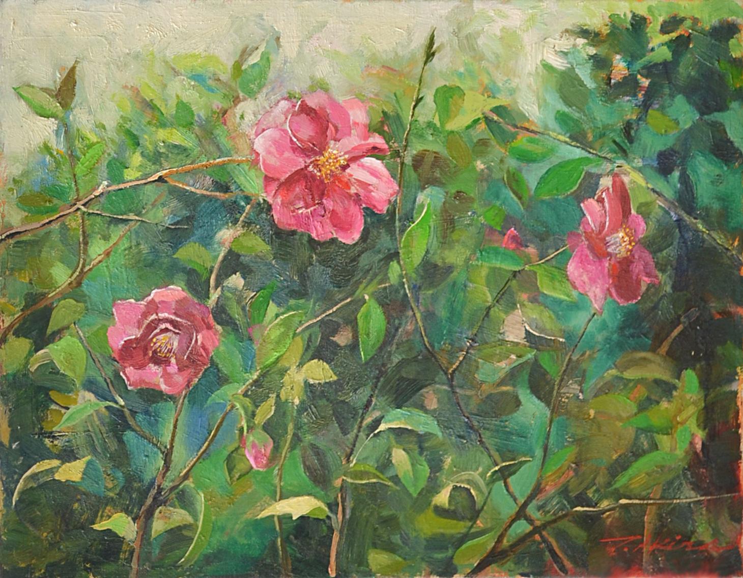 """""""Camellia Sasanqua"""""""